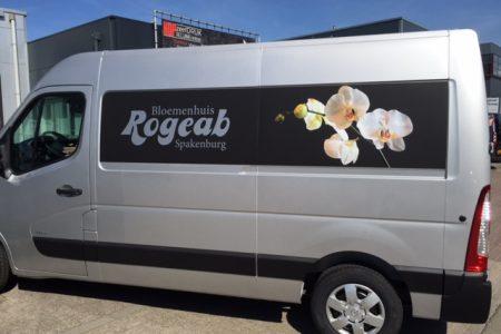 Auto Rogeab